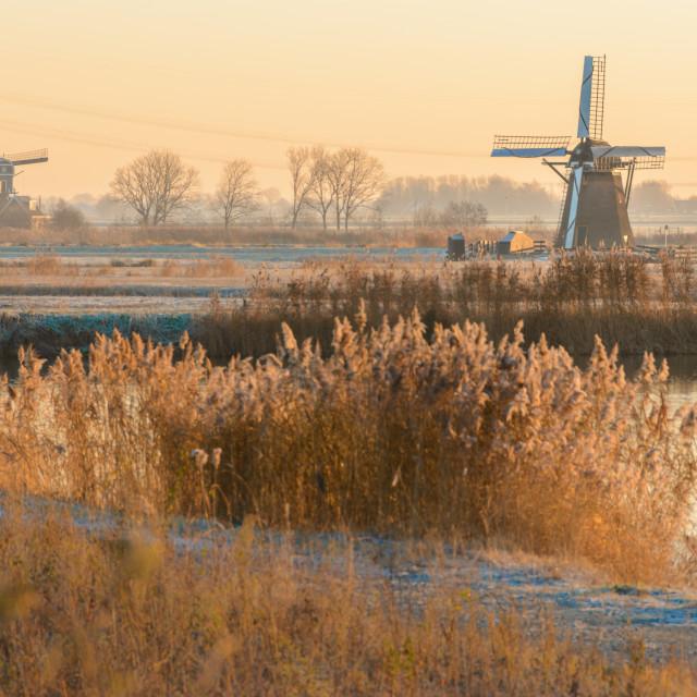 """Dutch Mornings"" stock image"