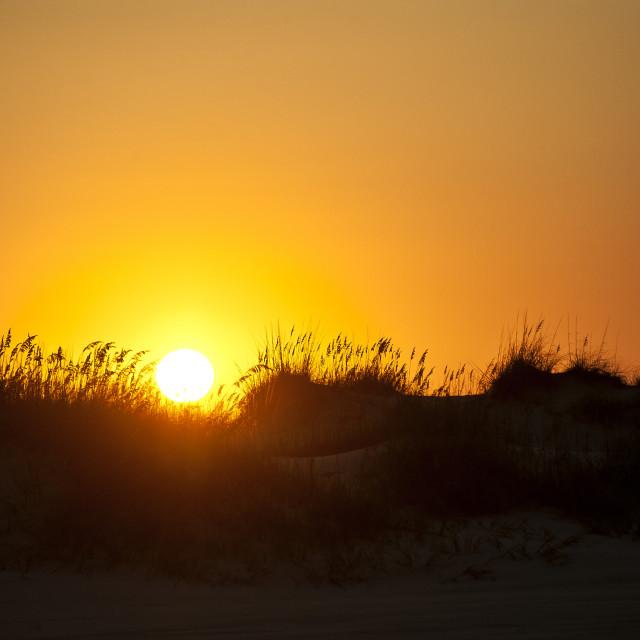 """Dune sunrise, Outer Banks, North Carolins, USA"" stock image"