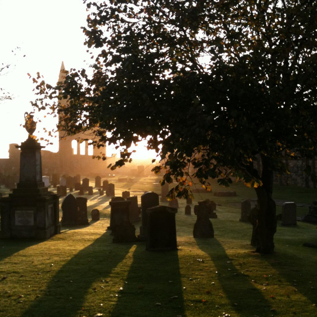 """""""St Andrews Cathedral grave yard at sunrise"""" stock image"""