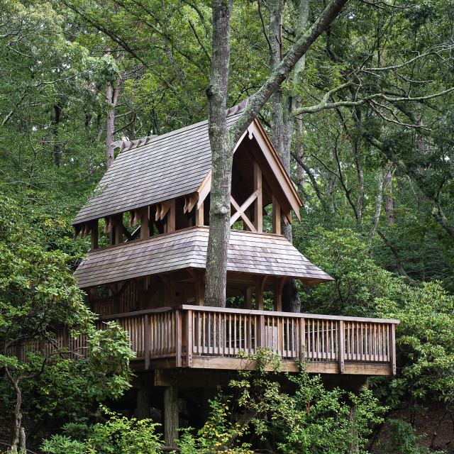 """""""Tree house, Hidden Hollow, Heritage Museums and Gardens, Sandwich, Massachusetts, USA"""" stock image"""