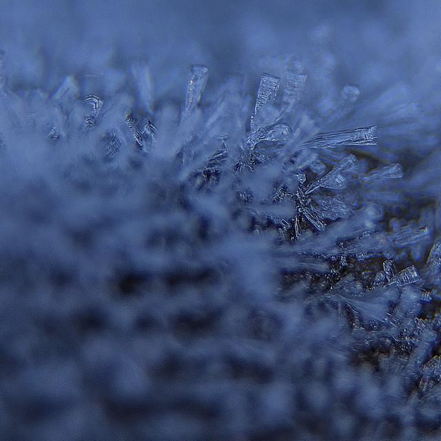 """Frozen snowflakes"" stock image"