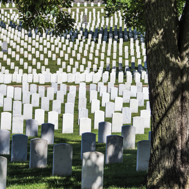 """US Soldiers' and Airmen's Home National Cemetery, Washington, DC, USA"" stock image"