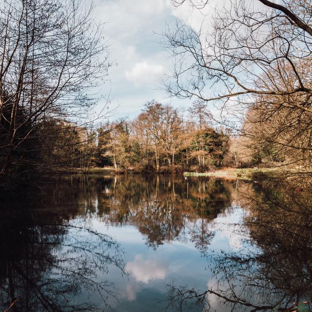 """Putney Heath Lake"" stock image"