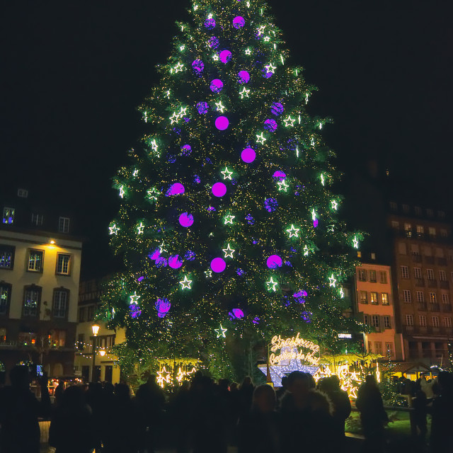 """Strasbourg Christmas Tree"" stock image"