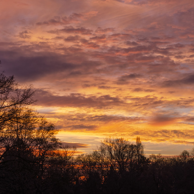 """""""Colors Of The Evening"""" stock image"""