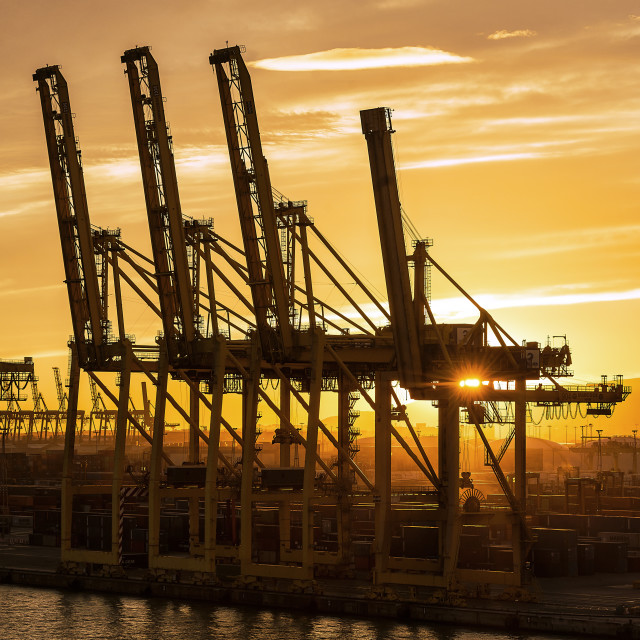 """""""Cranes await a shipping freighter to load with cargo, Barcelona, Spain"""" stock image"""
