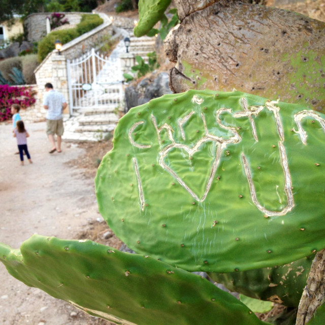 """Love graffiti"" stock image"