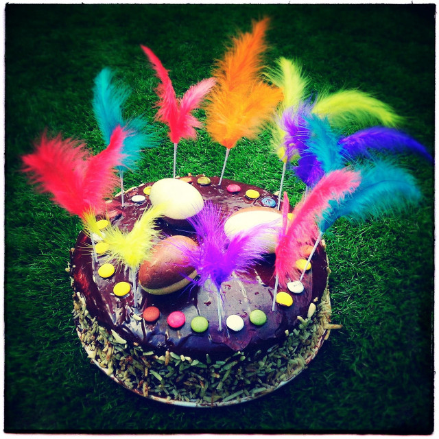 """""""Easter homemade gluten free cake with feathers"""" stock image"""