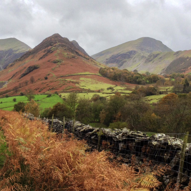 """""""Newlands Valley in the Lake District, Cumbria, England"""" stock image"""