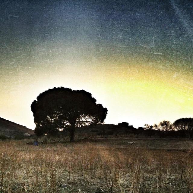 """Rural landscape. Crete Island, Greece."" stock image"