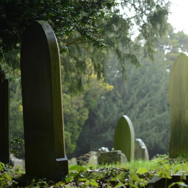 """""""Churchyard"""" stock image"""