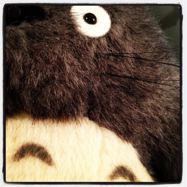 """""""Totoro"""" stock image"""