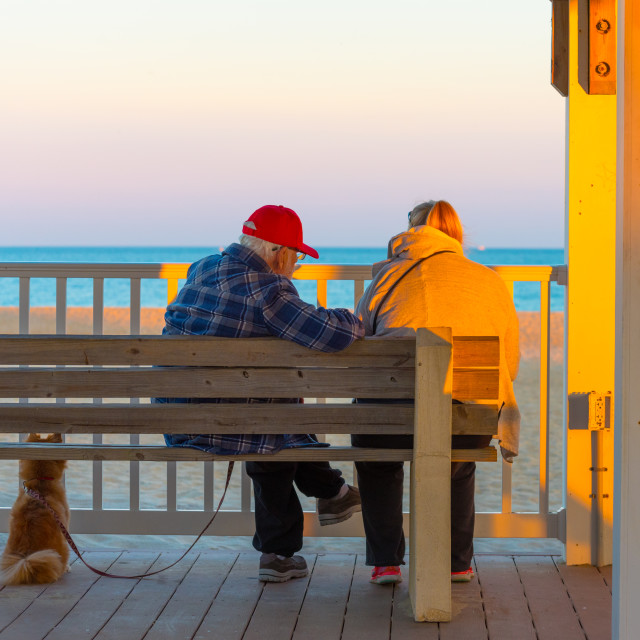 """Couple with a Dog Watching the Ocean from a Bench on the Boardwa"" stock image"