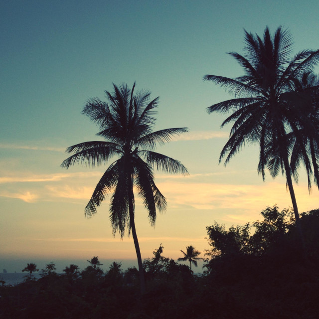 """""""Sunset over Ao Nang Beach, Krabi, Thailand, with islands in the distance and palm tree silhouettes."""" stock image"""