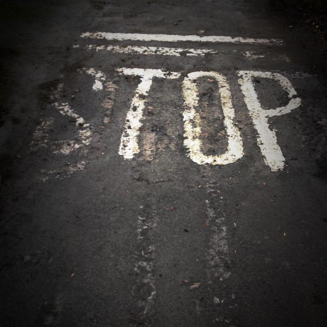 """White Stop road marking on Tarmac"" stock image"