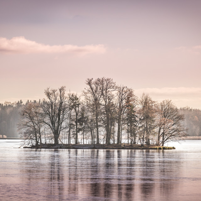 """An iced lake at Třeboň, Czech Republic"" stock image"