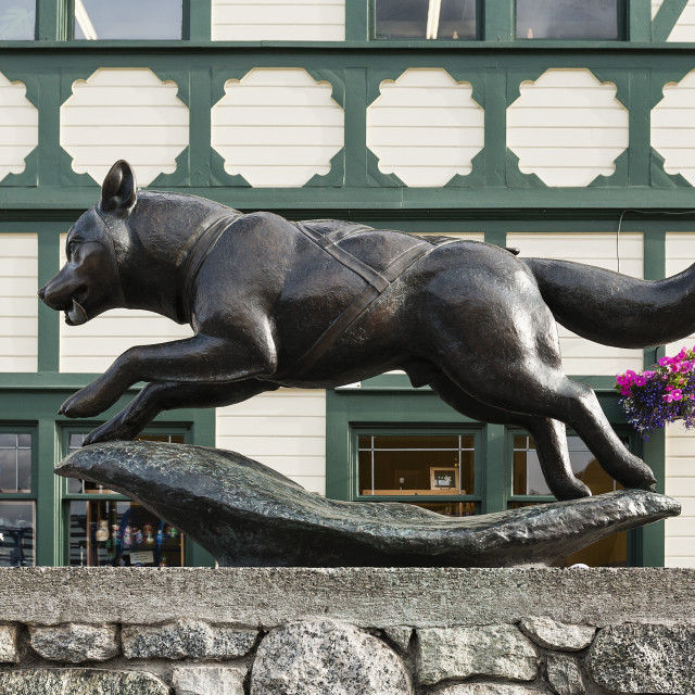 """""""The Last Great Race, Husky sculpture in tribute to the Iditarod, Anchorage, Alaska, USA"""" stock image"""