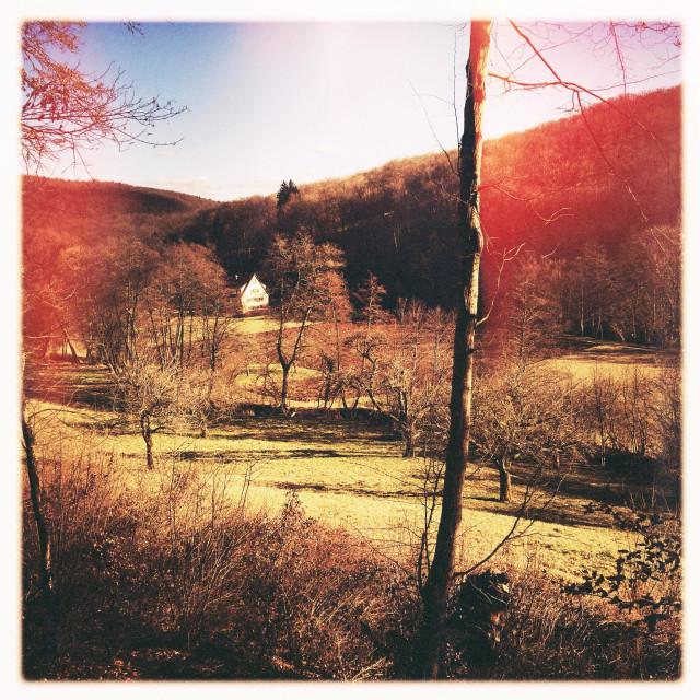 """Landscape near Bebenhausen Nature Park Schoenbuch Germany"" stock image"