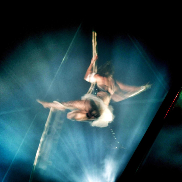 """""""Circus trapeze artist hangs from a rope in the big top"""" stock image"""