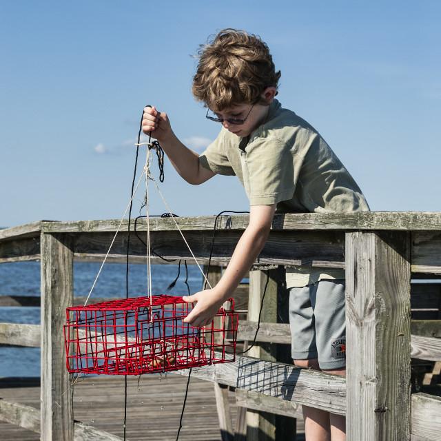 """Young boy crabbing from the dock, Outer Banks, North Carolina, USA"" stock image"