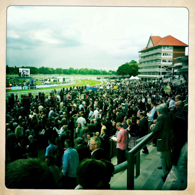 """York racecourse"" stock image"