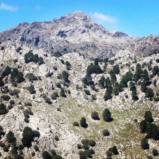 """""""Rocky mountains in the Parque Natural Sierra de Grazalema, Cadiz province, Andalusia, Spain"""" stock image"""