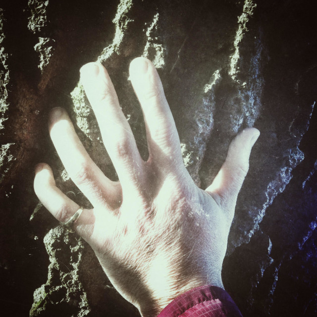 """""""Sinister mans hand on a tree trunk"""" stock image"""