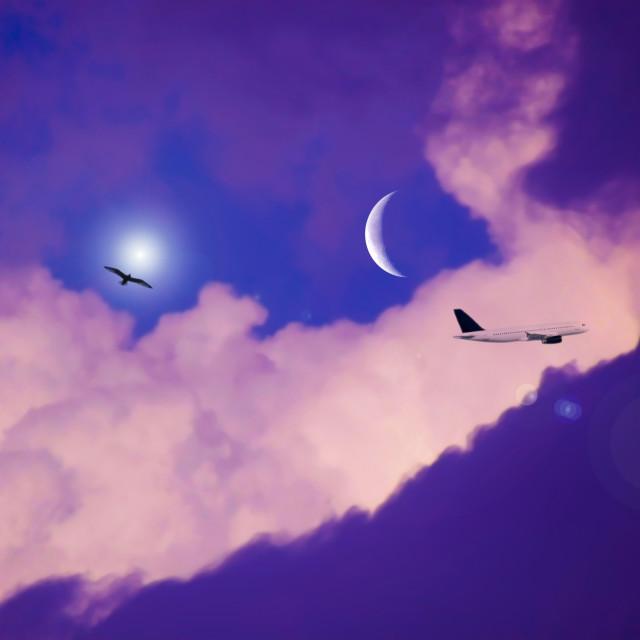 """""""Nubes con luna, sol, ave y avión"""" stock image"""