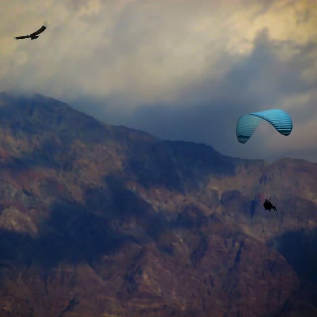 """""""Nubes con ave y parapente"""" stock image"""