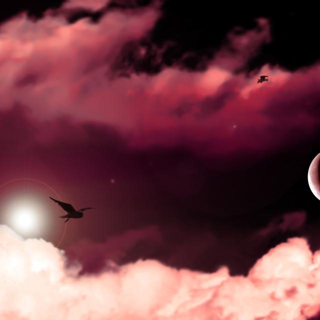 """""""Nubes con luna y aves"""" stock image"""