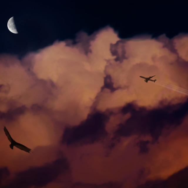 """""""Nubes con ave y avión"""" stock image"""