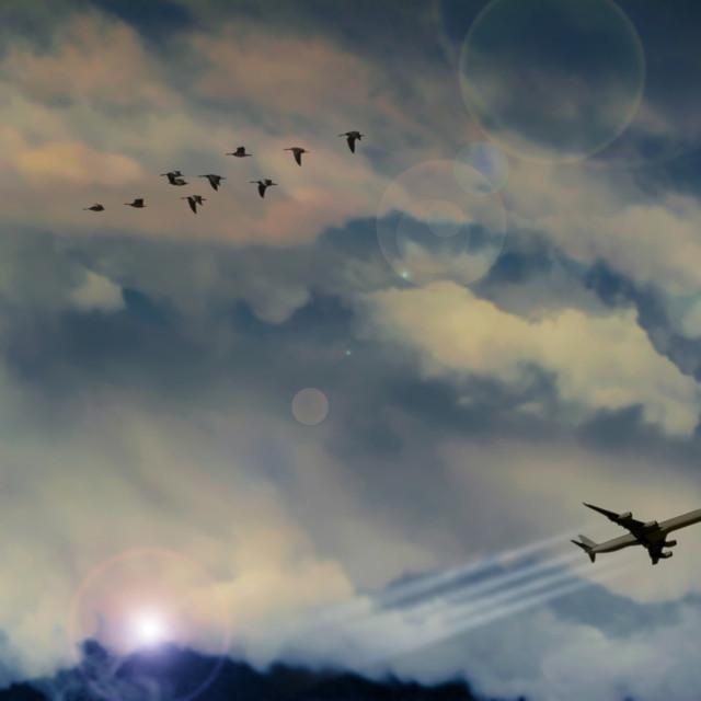 """""""Nubes con avión y aves"""" stock image"""