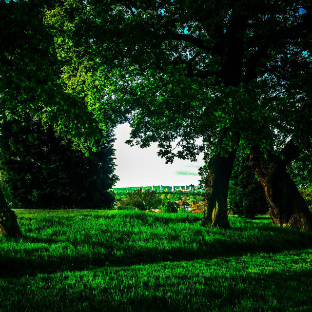 """""""Croydon viewed through frame of trees in park"""" stock image"""