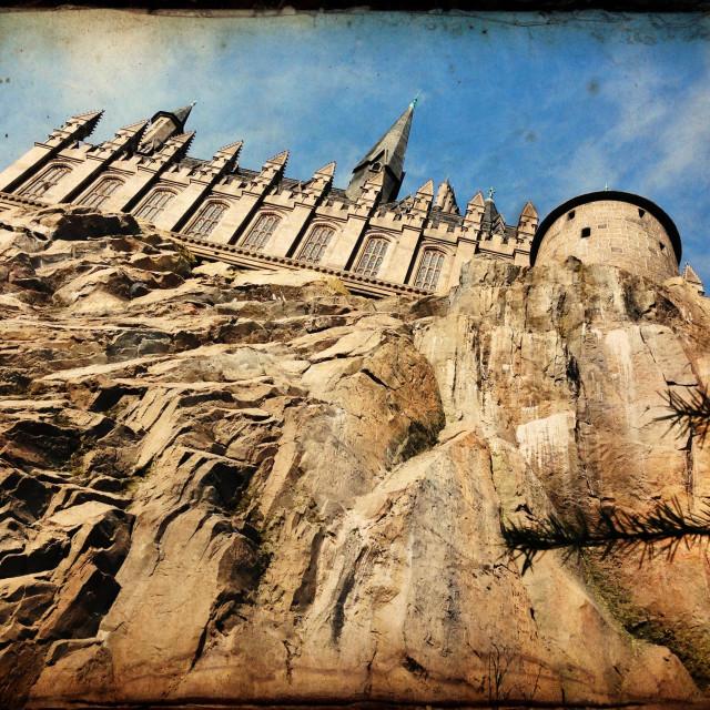 """Hogwarts Castle, Harry Potter area, Universal's Islands of Adventure, Orlando, Florida"" stock image"