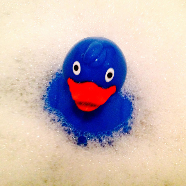 """Blue Rubber Duck"" stock image"
