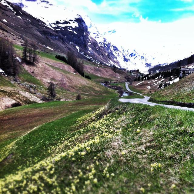 """""""alpine valley"""" stock image"""