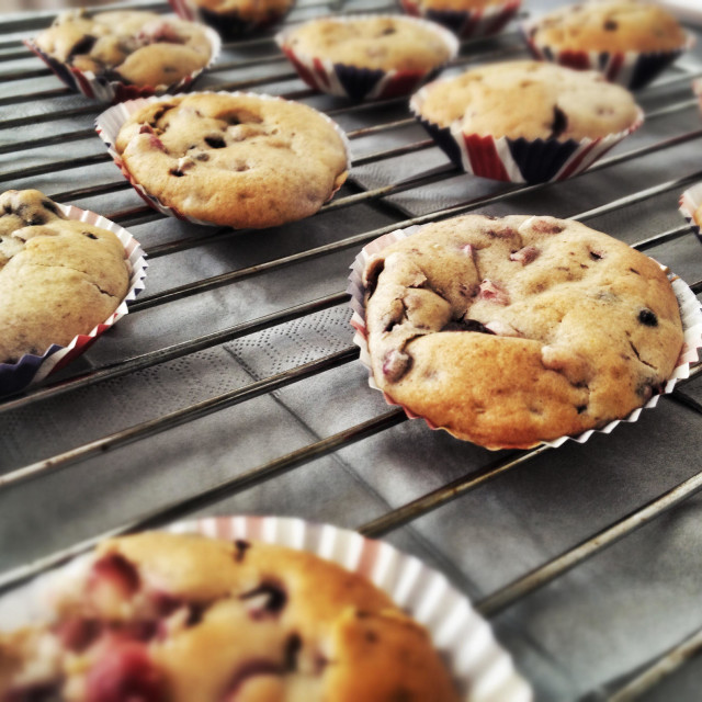 """""""Blue berry muffins"""" stock image"""