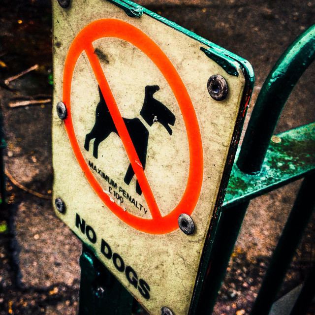 """No dogs allowed sign on green metal fence"" stock image"