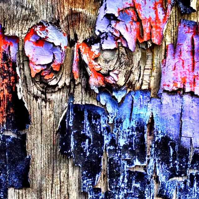 """Peeling graffiti on wooden fence"" stock image"