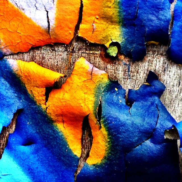 """Peeling graffiti art on wood"" stock image"
