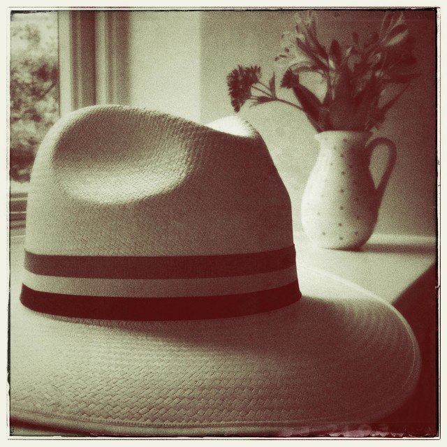 """""""Panama Fedora hat laying on window shelf with a vase containing flowers in the background"""" stock image"""