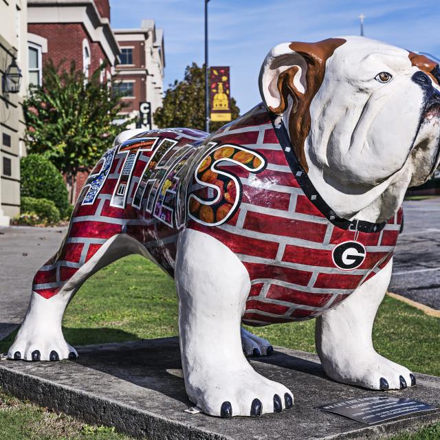 """University of Georgia Bulldog sculpture, Athens, Georgia, USA"" stock image"