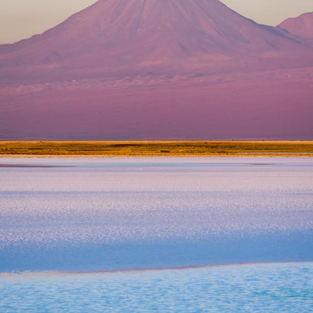 """""""Tebenquiche salt lagoon with licancabur volcano, SanPedro de Ata"""" stock image"""