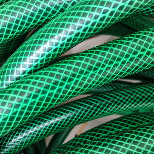"""Green hose"" stock image"