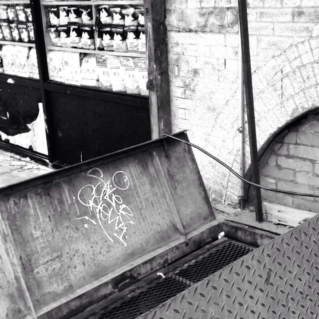 """Graffitied Metal Basement Door, Brooklyn, NY"" stock image"