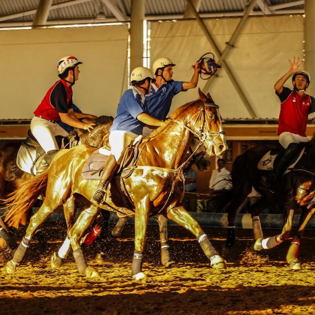 """HORSEBALL"" stock image"