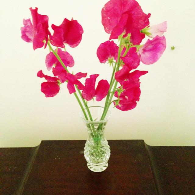 """""""Vase of sweet peas on bureau."""" stock image"""