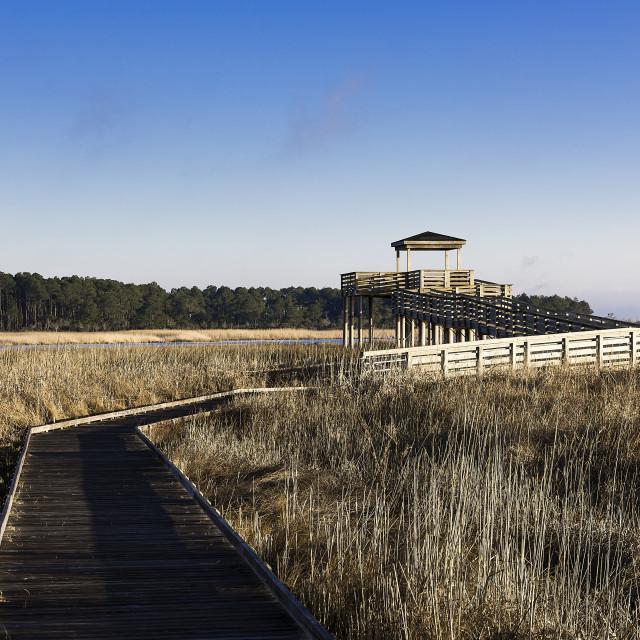 """Salt marsh viewing platform atBodie Island Lighthouse, Cape Hatteras National Seashore, North Carolina, USA"" stock image"