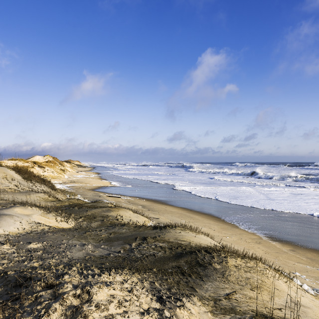 """Pristine beach along Cape Hatteras National Seashore, Outer Banks, North Carolina, USA"" stock image"