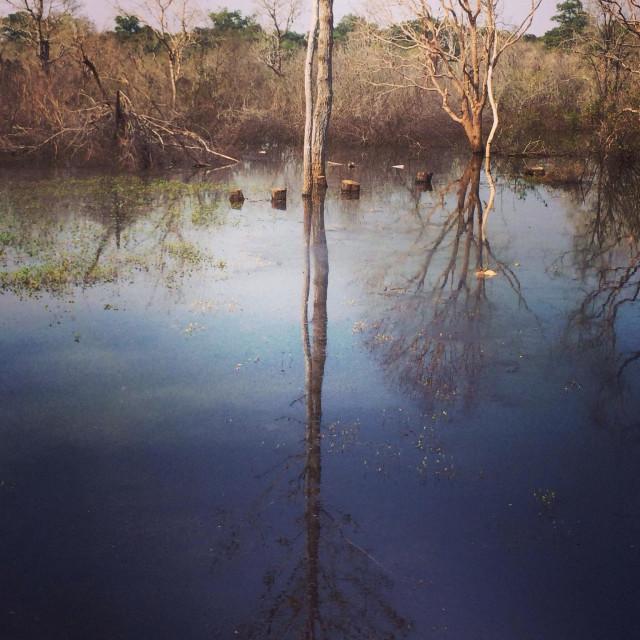 """Preah Neak Poan in Cambodia"" stock image"